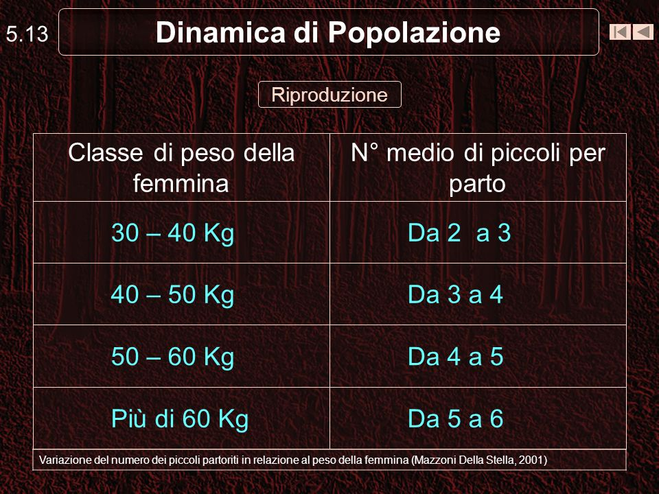 Dinamica di Popolazione