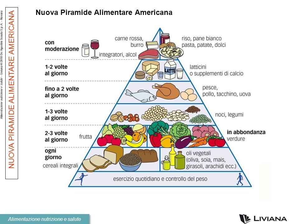Nuova Piramide Alimentare Americana