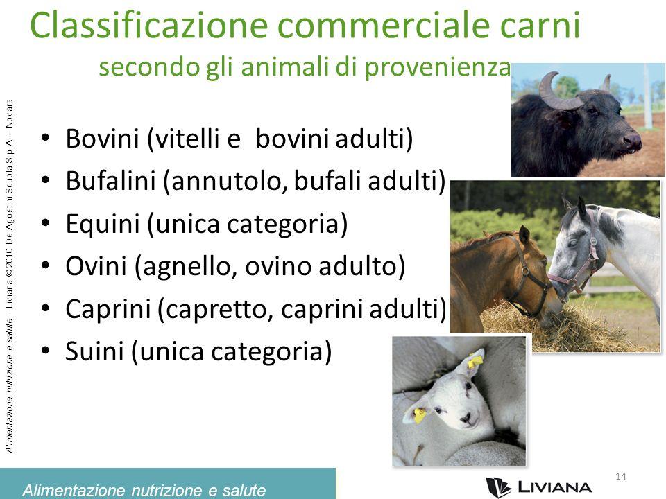 Classificazione commerciale carni secondo gli animali di provenienza