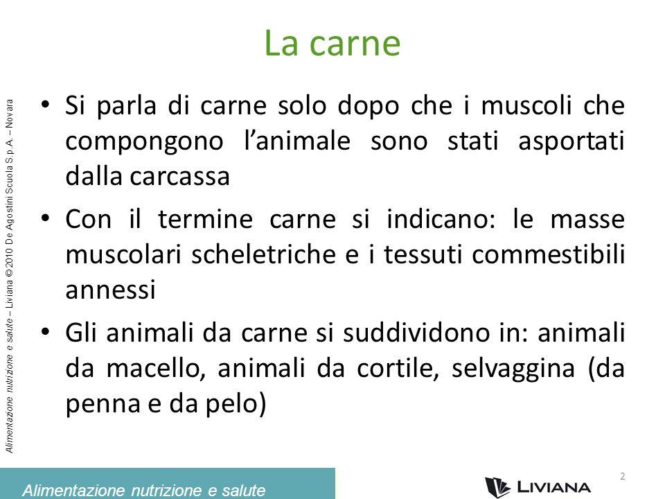 La carne Si parla di carne solo dopo che i muscoli che compongono l'animale sono stati asportati dalla carcassa.