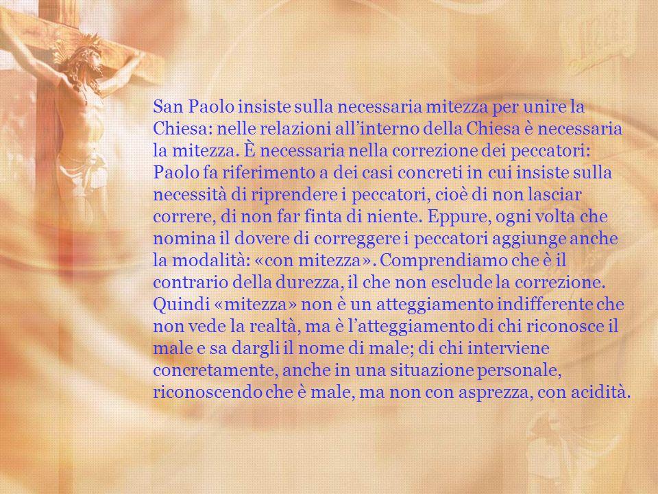 San Paolo insiste sulla necessaria mitezza per unire la Chiesa: nelle relazioni all'interno della Chiesa è necessaria la mitezza.