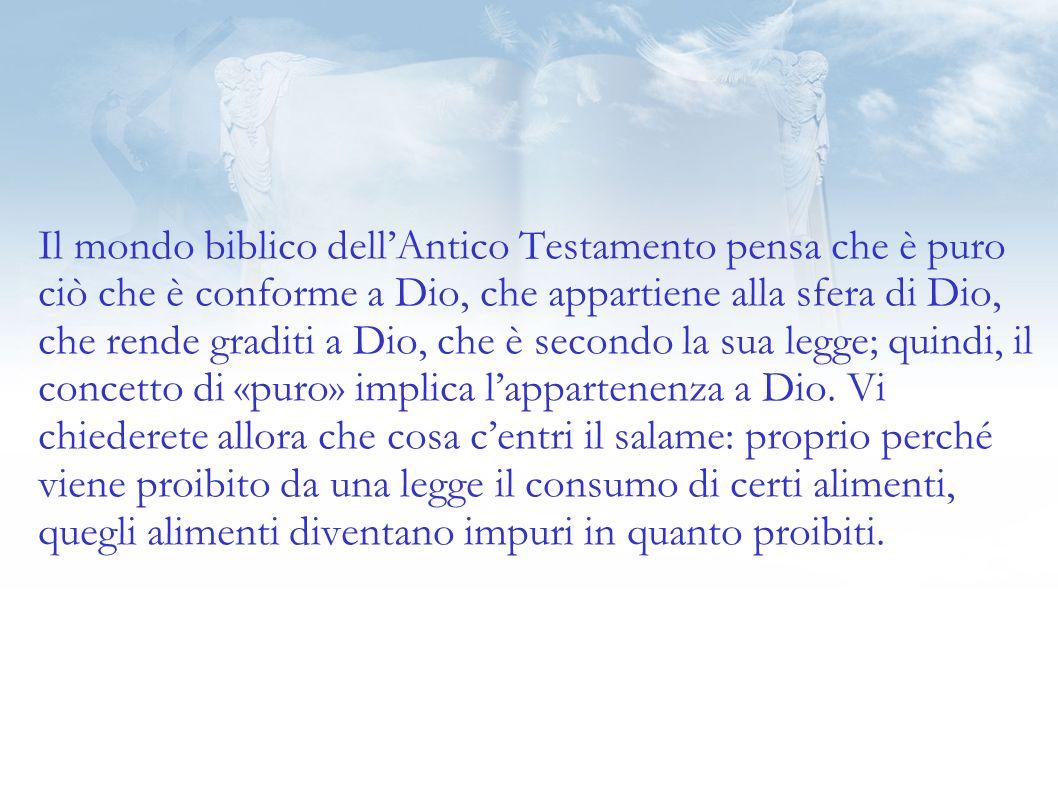 Il mondo biblico dell'Antico Testamento pensa che è puro ciò che è conforme a Dio, che appartiene alla sfera di Dio, che rende graditi a Dio, che è secondo la sua legge; quindi, il concetto di «puro» implica l'appartenenza a Dio.