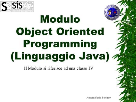 Modulo Object Oriented Programming (Linguaggio Java)