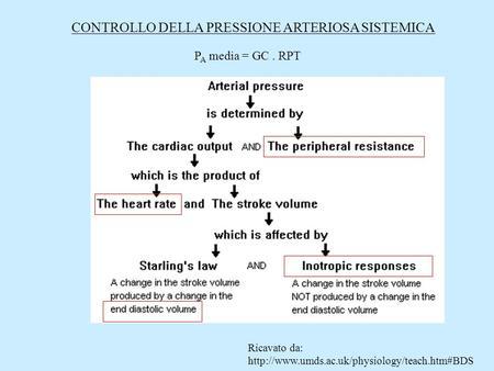 Технология приготовления дибазола - Trattamento dellipertensione 80