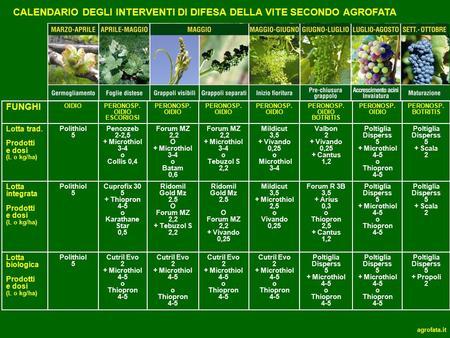 Calendario Dei Trattamenti Della Vite 2019.Calendario Degli Interventi Di Difesa Del Melo Secondo Agrofata