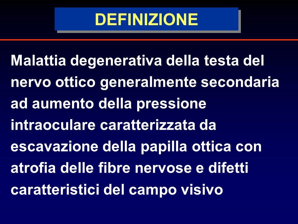 3c8123749 6 DEFINIZIONE Malattia degenerativa della testa del nervo ottico ...