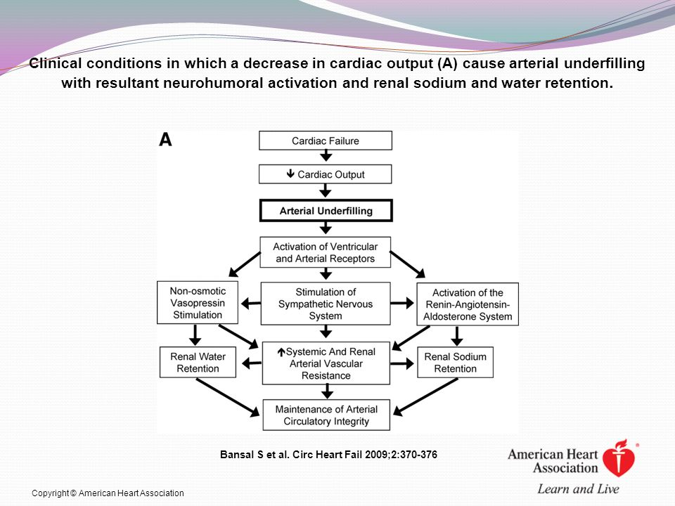 Clinical conditions in which a decrease in cardiac output (A) cause arterial underfilling with resultant neurohumoral activation and renal sodium and water retention.