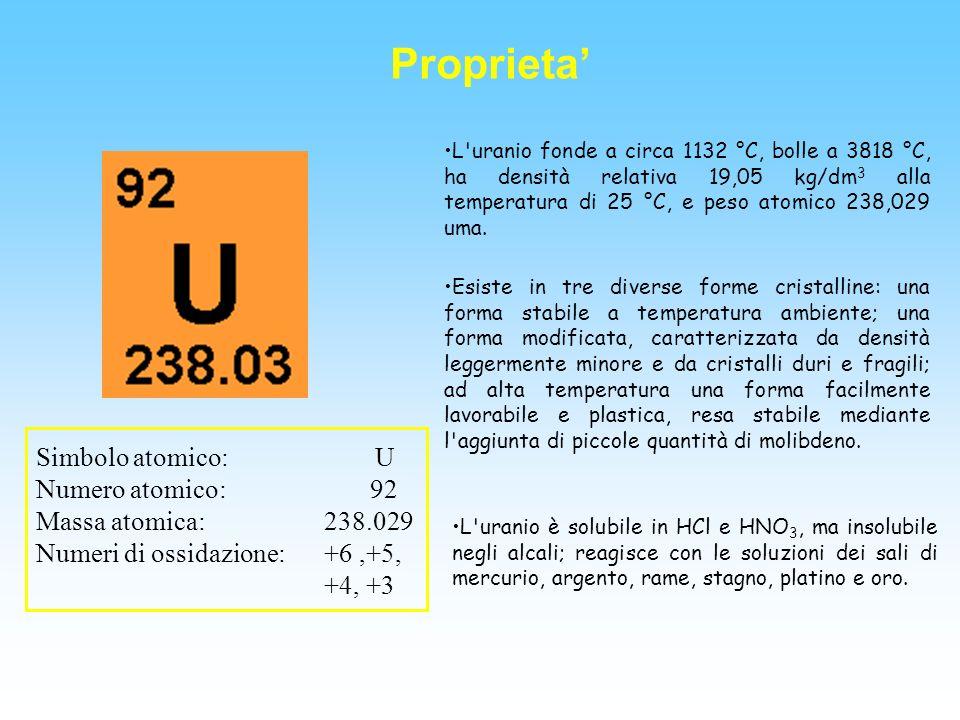 Uranio piombo datazione PPT