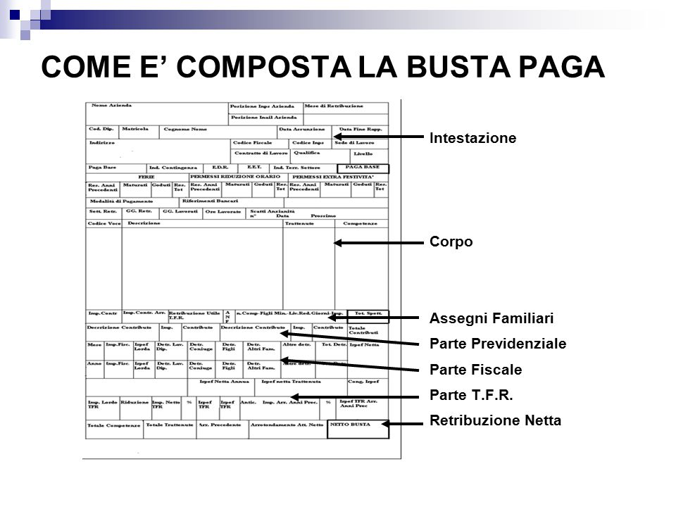 Dott Ssa Chiara Fantinato Consulente Del Lavoro Ppt Video Online