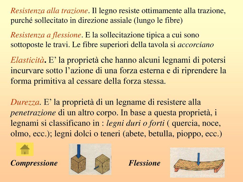 Le Fibre Del Legno il legno - rossi francesco - brambilla giacomo - ppt scaricare