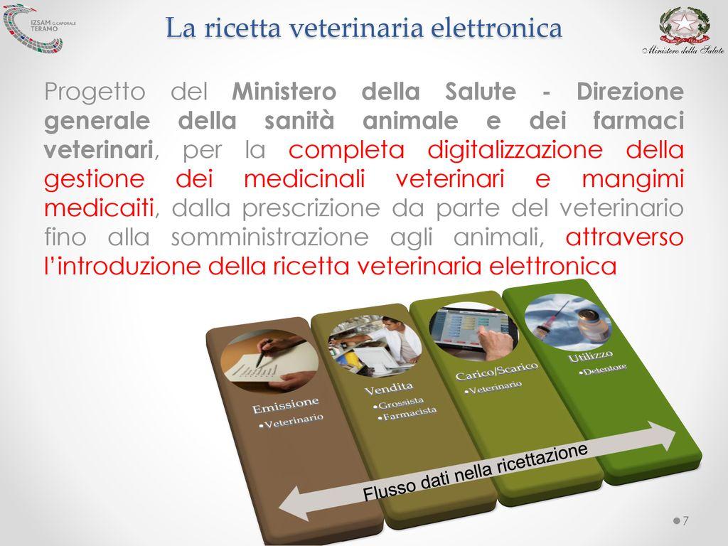 Ricetta Elettronica Veterinaria Grossisti.La Ricetta Veterinaria Elettronica Modalita Applicative Ppt Scaricare