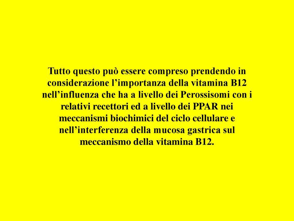 5767ac73c7c8f2 5 Tutto questo può essere compreso prendendo in considerazione l importanza  della vitamina B12 nell influenza che ha a livello dei Perossisomi con i ...