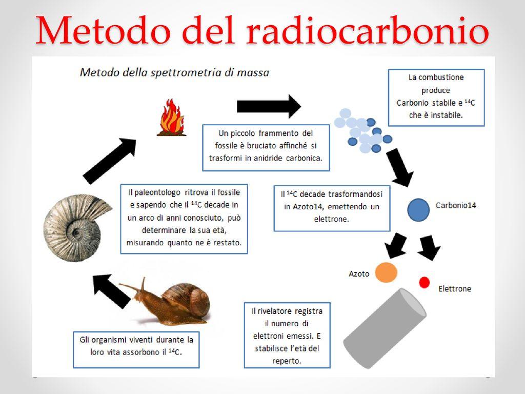 Composto specifico datazione del radiocarbonio