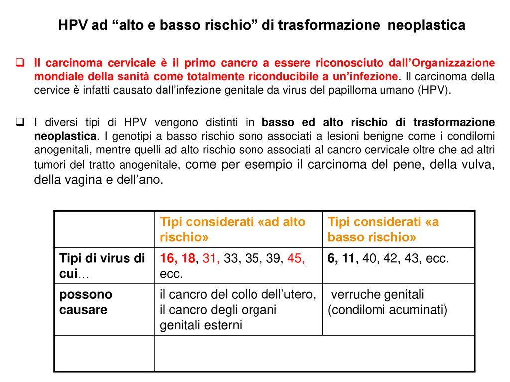 genotipi hpv ad alto rischio
