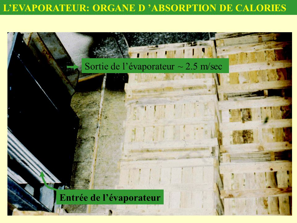 L'EVAPORATEUR: ORGANE D 'ABSORPTION DE CALORIES