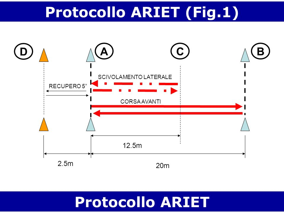 Protocollo ARIET (Fig.1)