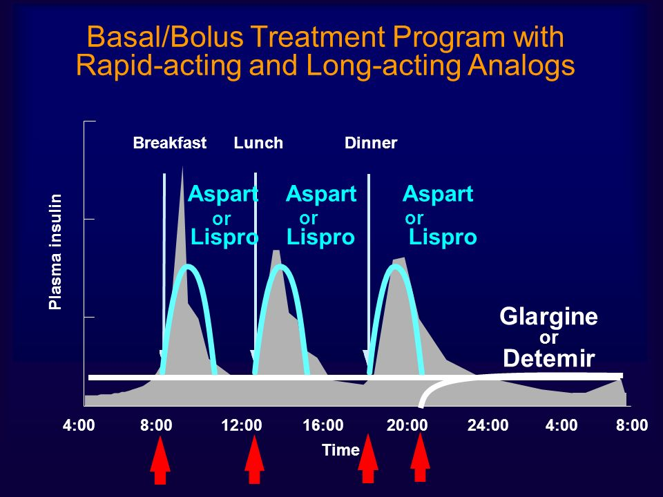Basal/Bolus Treatment Program with Rapid-acting and Long-acting Analogs