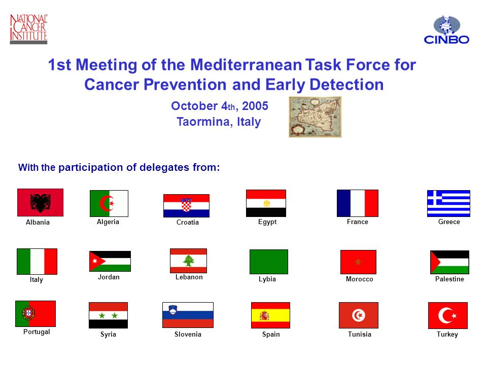 1st Meeting of the Mediterranean Task Force for