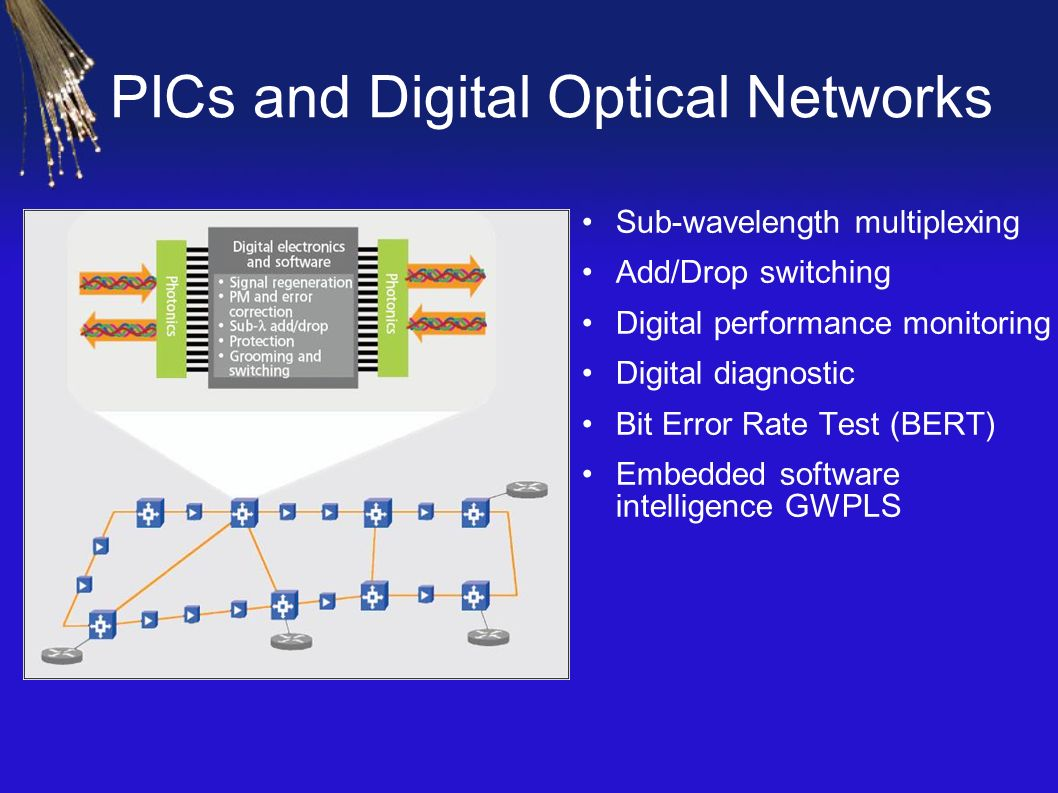 PICs and Digital Optical Networks