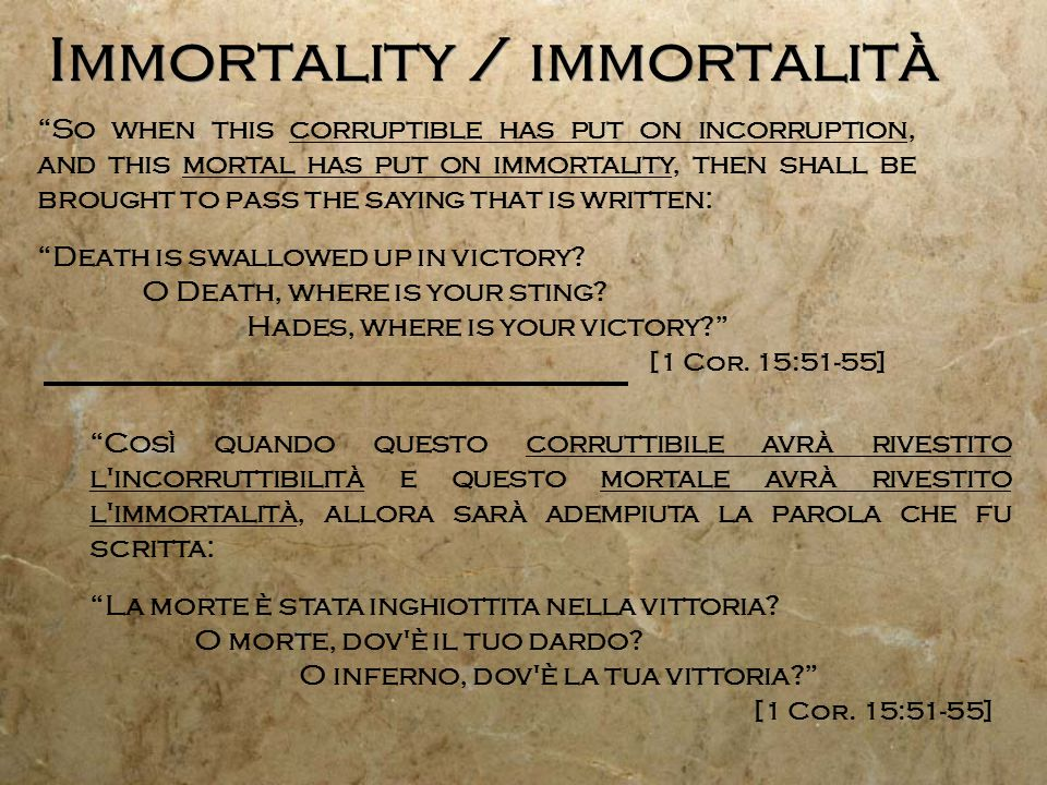 Immortality / immortalità