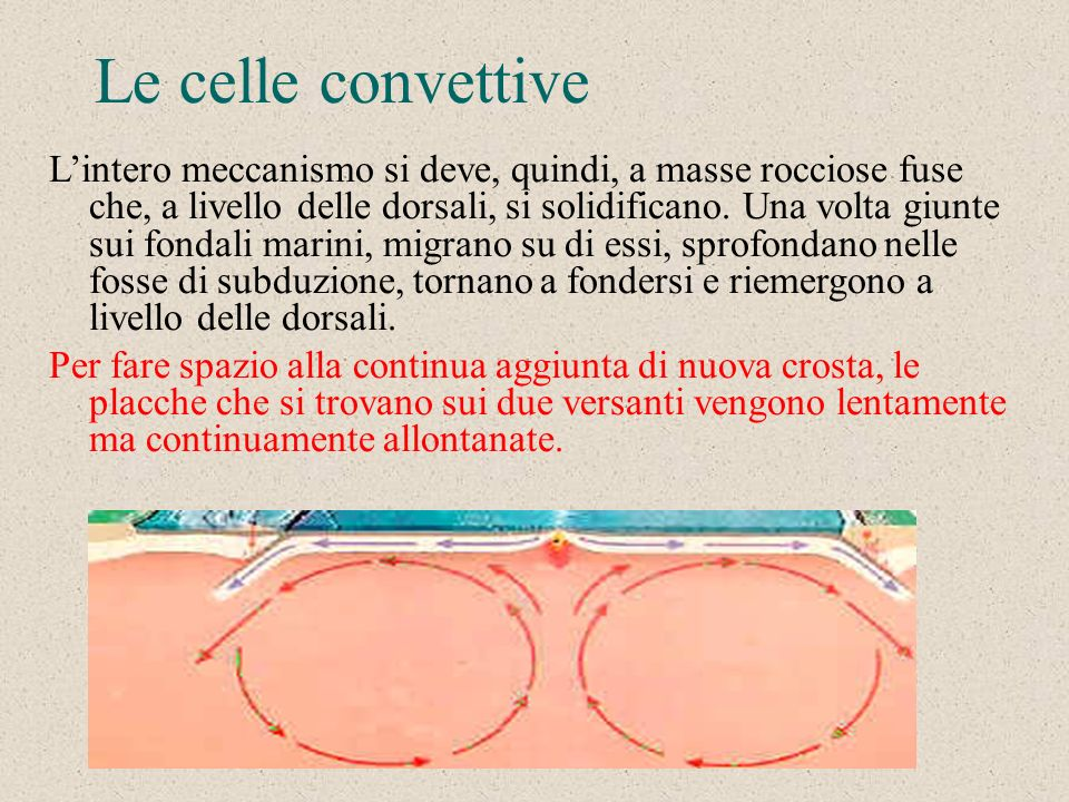 Le celle convettive