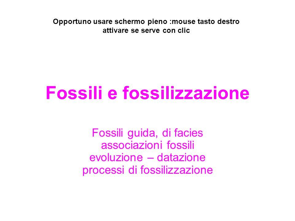 Combustibili fossili di datazione di carbonio