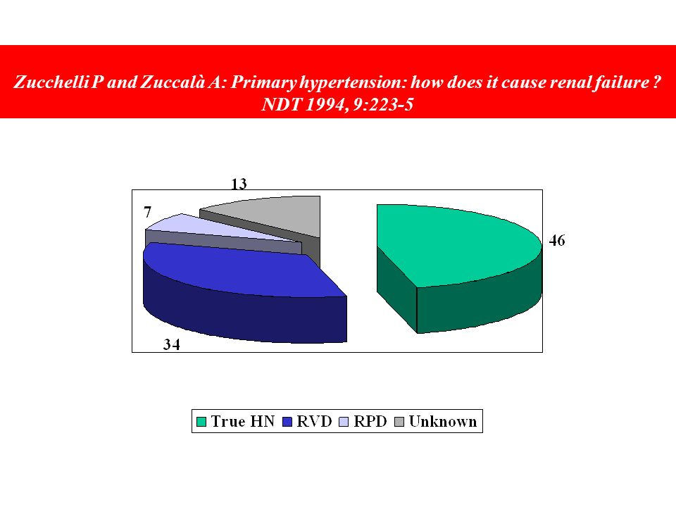 Zucchelli P and Zuccalà A: Primary hypertension: how does it cause renal failure NDT 1994, 9:223-5
