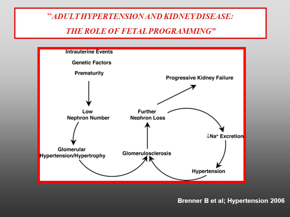 THE ROLE OF FETAL PROGRAMMING