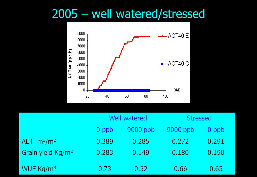 2005 – well watered/stressed