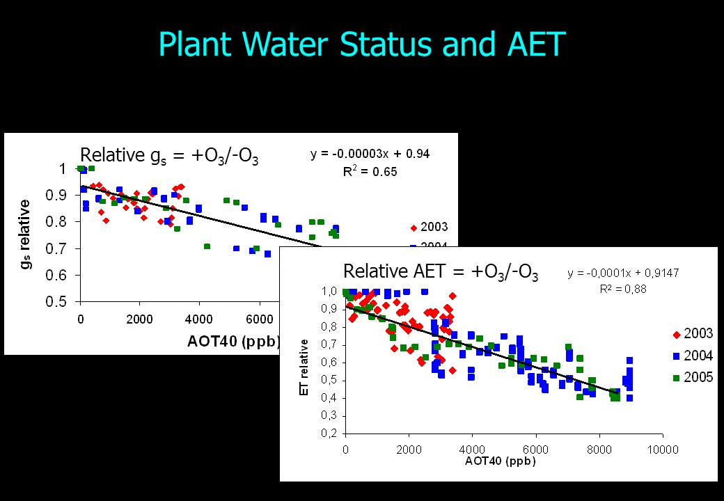 Plant Water Status and AET