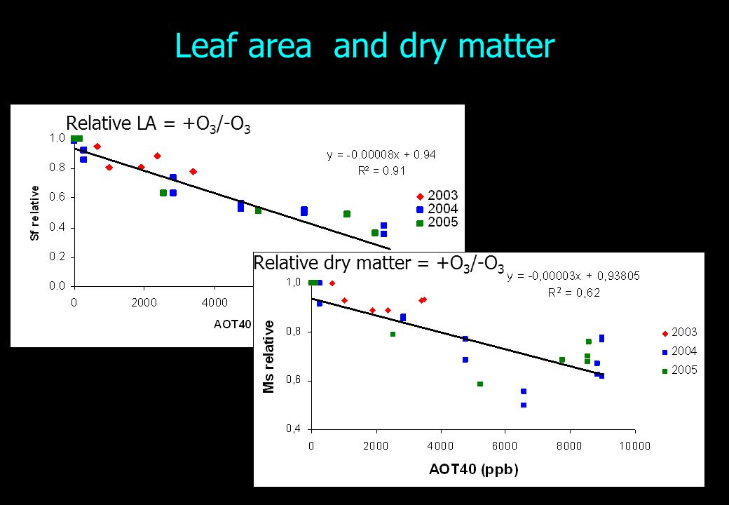 Leaf area and dry matter