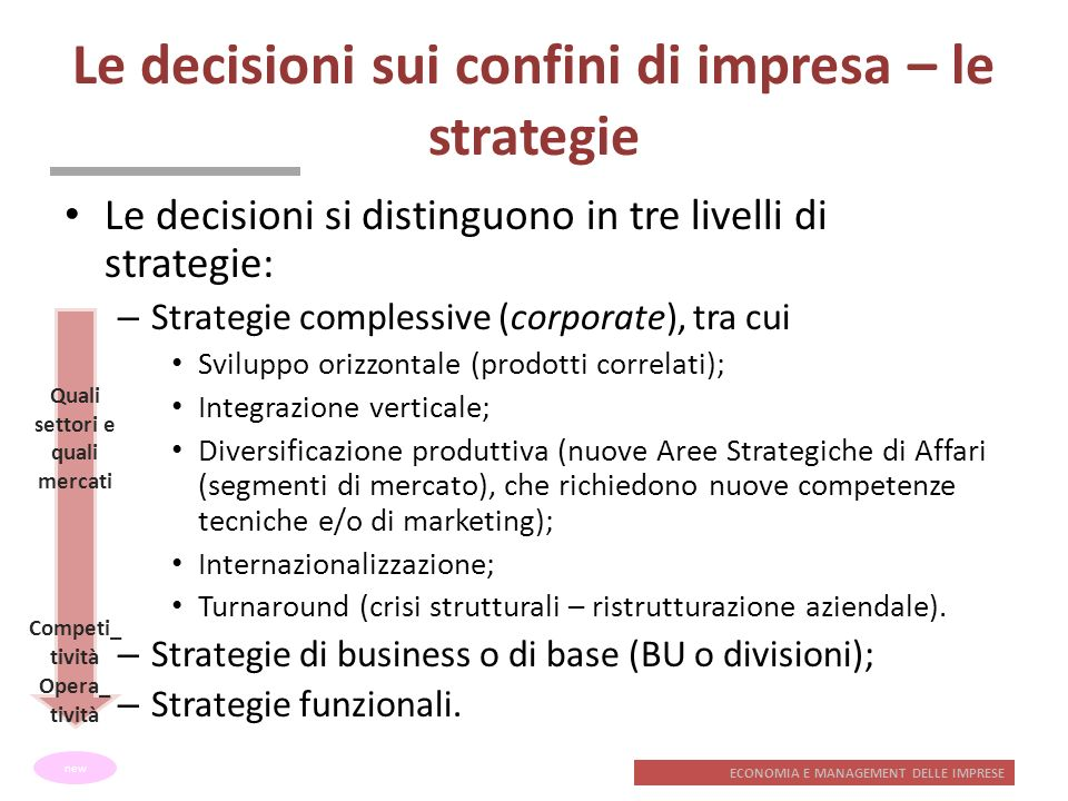 Le decisioni sui confini di impresa – le strategie