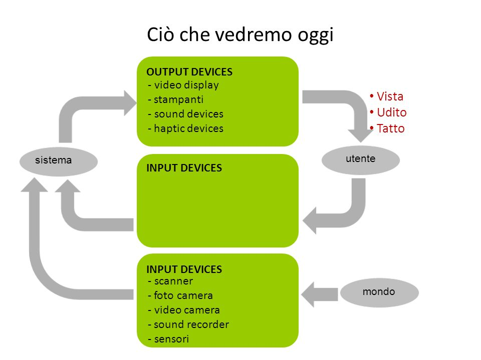 Ciò che vedremo oggi Vista Udito Tatto OUTPUT DEVICES - video display