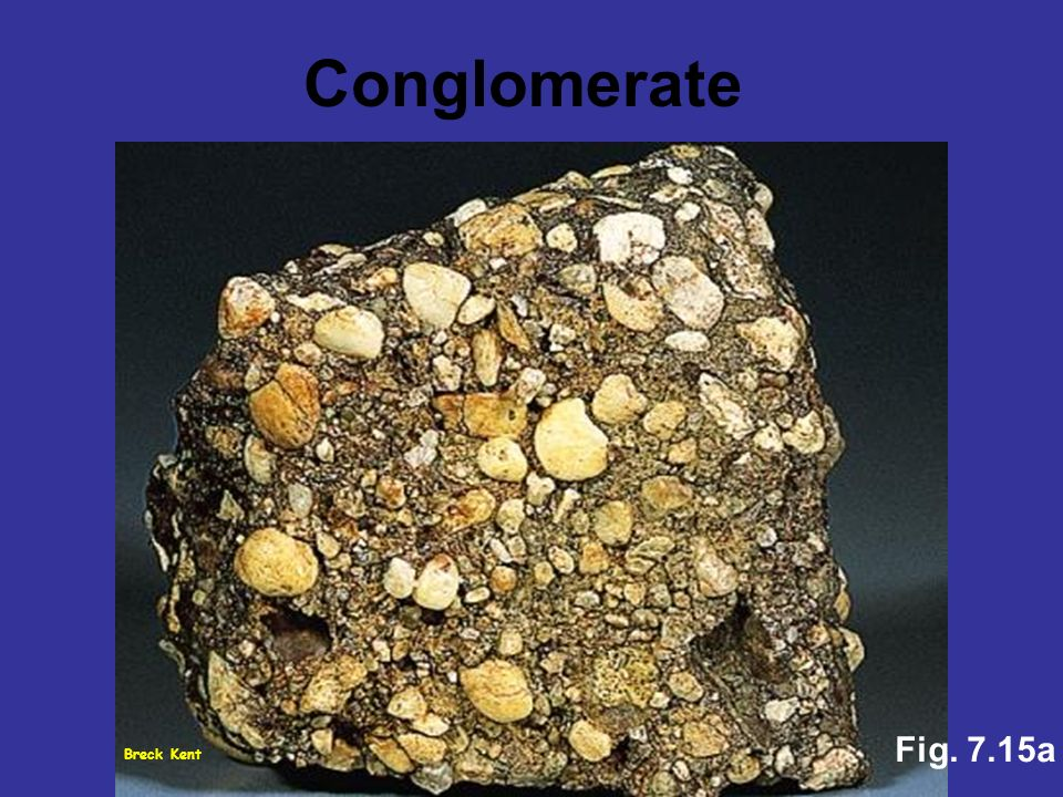 Conglomerate Fig. 7.15a Breck Kent