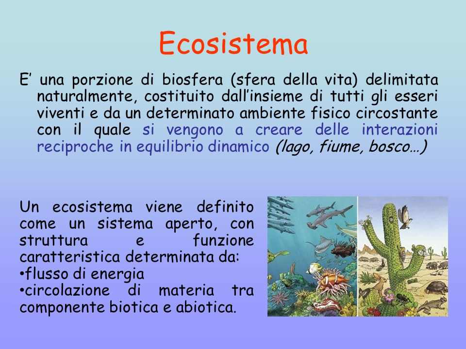 Ecologia Ppt Video Online Scaricare