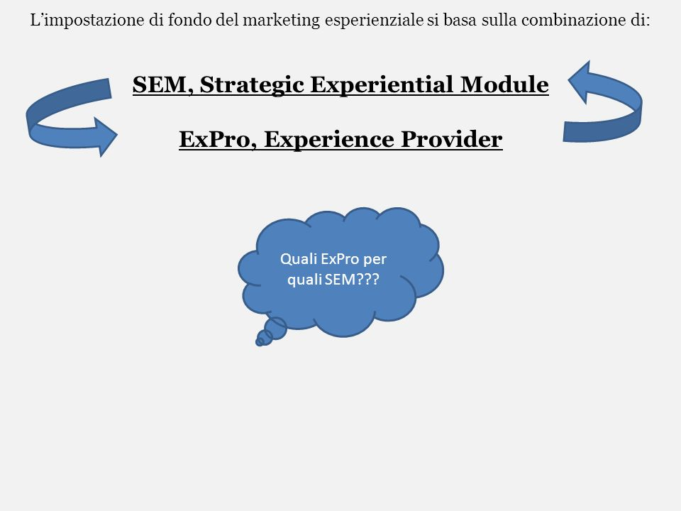 SEM, Strategic Experiential Module ExPro, Experience Provider