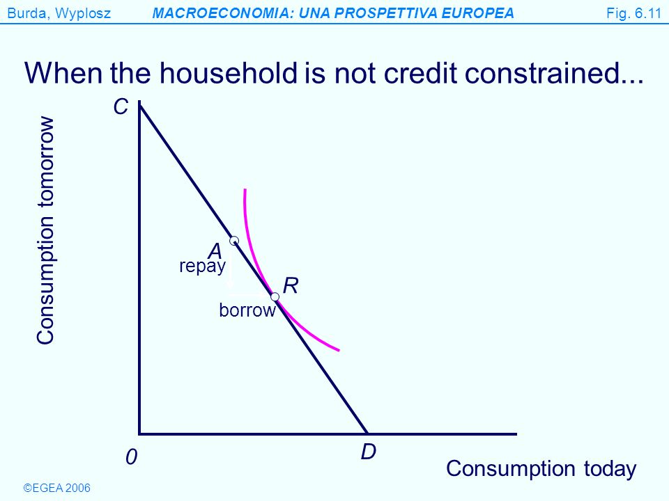 When the household is not credit constrained...