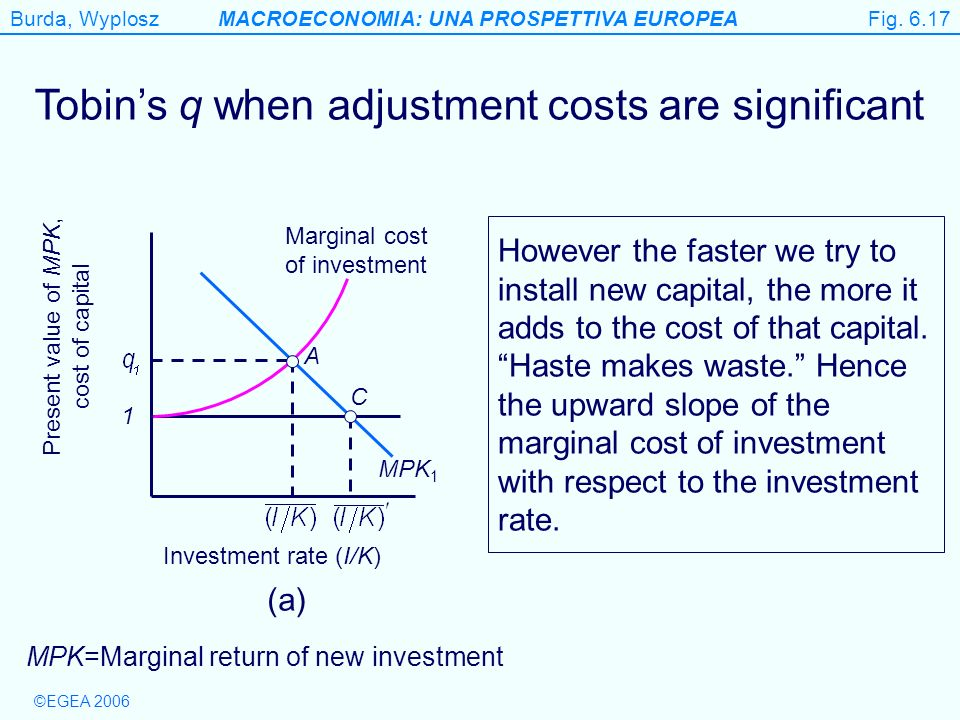 Figure 6.17 Tobin's q when adjustment costs are significant