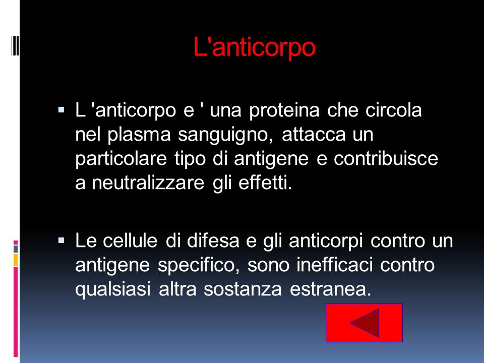 L anticorpo