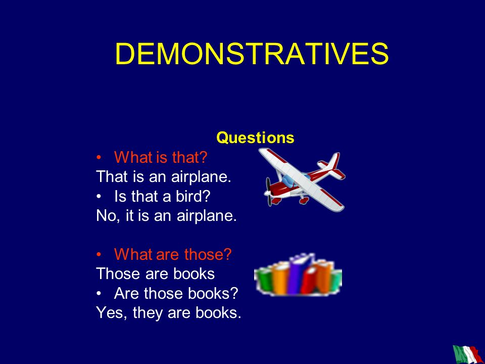 DEMONSTRATIVES Questions What is that That is an airplane.