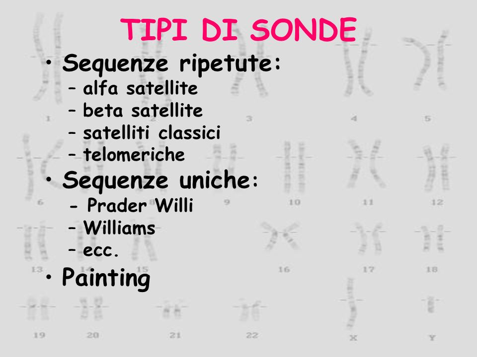TIPI DI SONDE Sequenze ripetute: Sequenze uniche: Painting