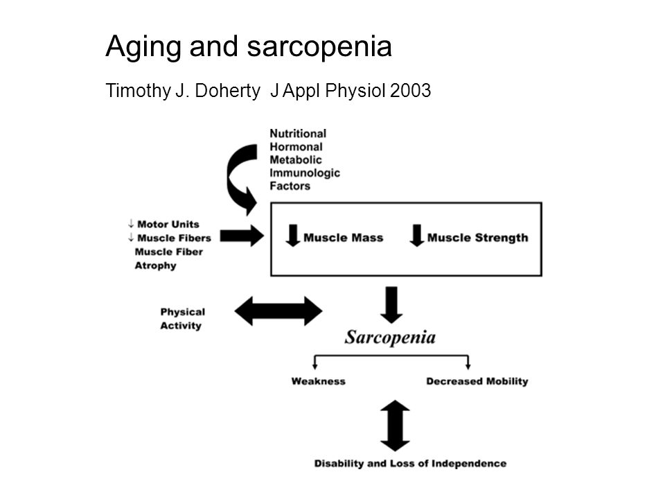 Aging and sarcopenia Timothy J. Doherty J Appl Physiol 2003