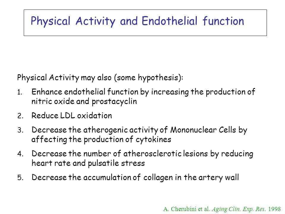 Physical Activity and Endothelial function