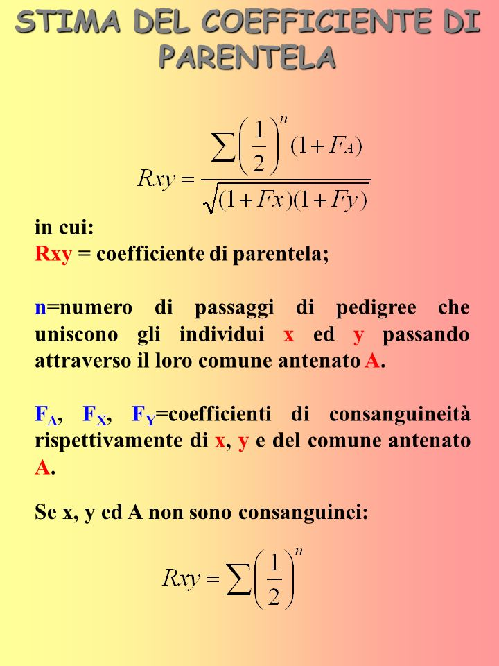 STIMA DEL COEFFICIENTE DI PARENTELA