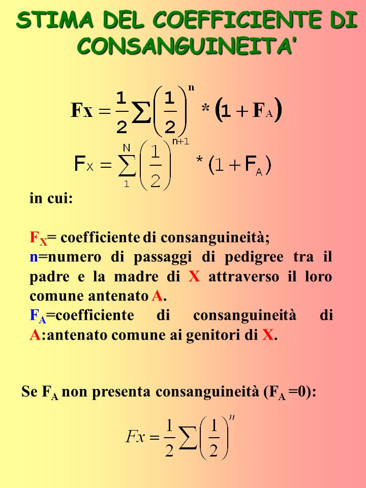 STIMA DEL COEFFICIENTE DI CONSANGUINEITA'