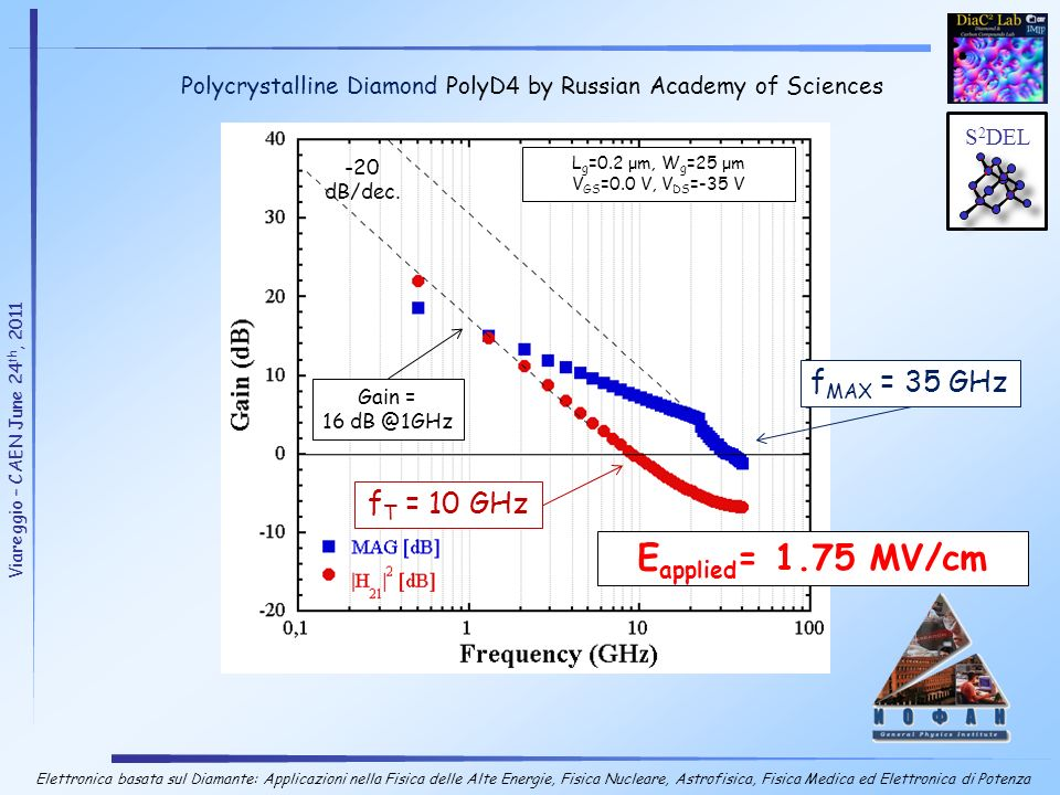Polycrystalline Diamond PolyD4 by Russian Academy of Sciences