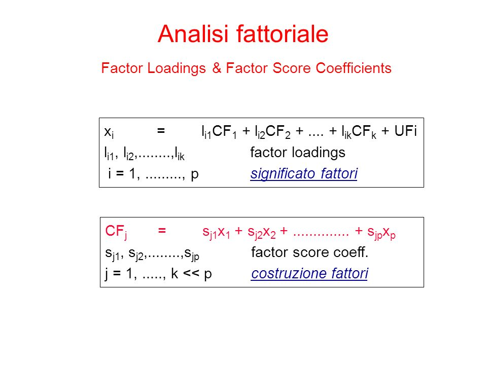 Factor Loadings & Factor Score Coefficients