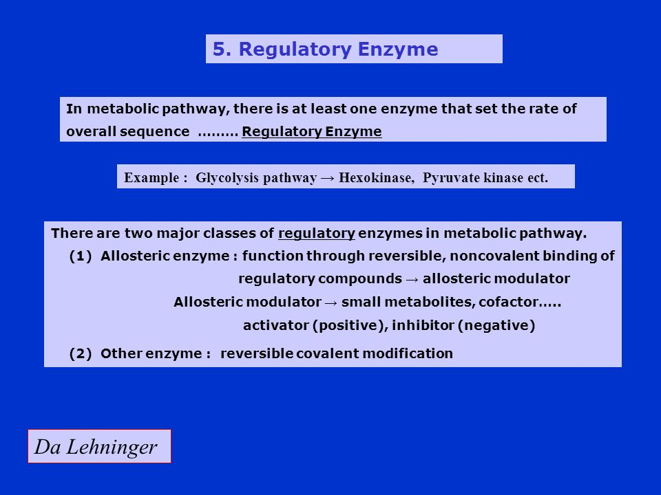 Da Lehninger 5. Regulatory Enzyme