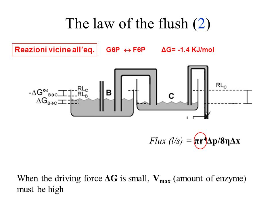 The law of the flush (2) Flux (l/s) = πr4Δp/8ηΔx