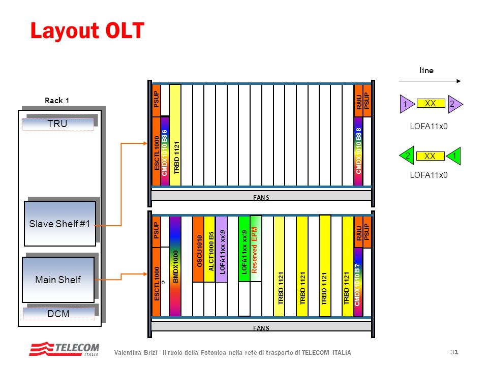 Layout OLT TRU Slave Shelf #1 Main Shelf DCM line Rack 1 1 XX 2 c